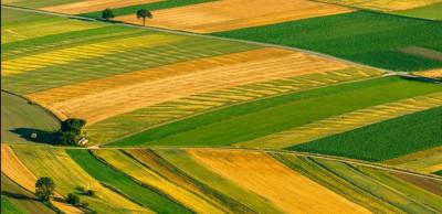 იყიდება მიწის ნაკვეთი სვანეთში